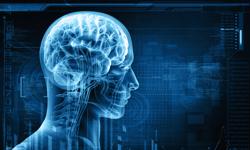 Doctors Suspect Kelly Osborne may Suffer from Epilepsy