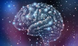 Study: Epileptic Drugs May Reverse Brain Development Pathology When Taken Immediately Following Seizure