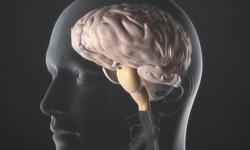 Study: Children's Vaccine Doesn't Increase Epileptic Seizures
