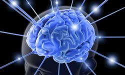 Twitter Study Reveals Lack of Understanding Toward Epilepsy