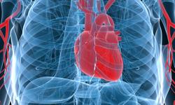 "New ""Hybrid"" Procedure Can Treat A-Fib Patients"